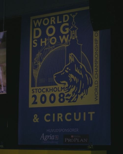 12worlddogshow--